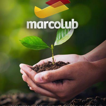Marcolub