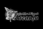 logo-sao-miguel-arcanjo-pb